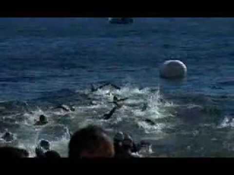 Maratona Aquática de Revezamento